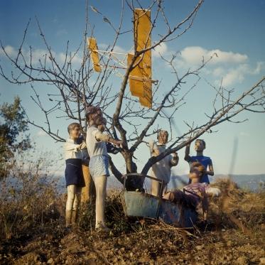 1977Summer CampThe Plane and the Swing.1977Les grandes vacancesL'Avion et la BalanÁoire.Bernard Faucon / Agence VU