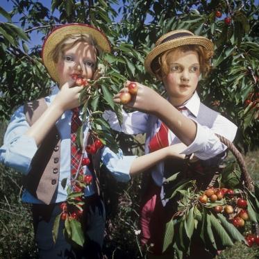 1978Summer CampThe picking.1978Les grandes vacancesLa cueillette.Bernard Faucon / Agence VU