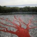 """France, 1991""""Idols and sacrifices"""", The tree shadowFrance, 1991""""Les idoles et les sacrifices"""", L'ombre de l'arbre  © Bernard Faucon / Agence VU"""