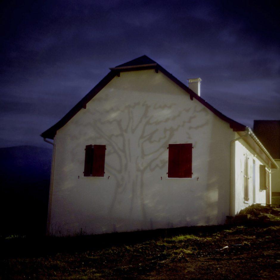 """""""Short lived"""",  2006"""