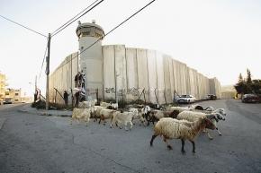 West Bank, Bethlehem, 04 March 200728 Millimetres, Face 2 Face.Security fence, Palestinian side.Cisjordanie, Bethléem, 04 mars 200728 Millimetres, Face 2 Face.Barrière de sécurité, côté palestinien.JR