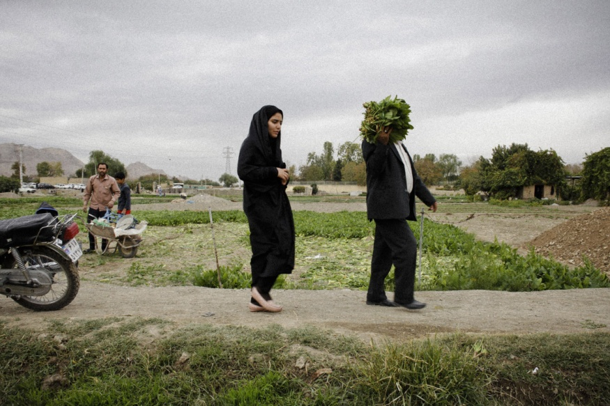 Iran, Isfahan, October 30th 2015 - Najnun area, on the river side. On friday, farmers sell their products, and customers can come pick themselves the vegetables on their lands.